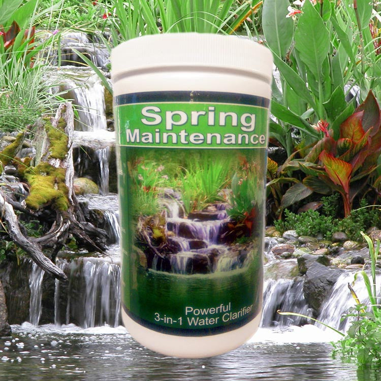 Spring Maintenance Beneficial Pond Bacteria Plus Barley