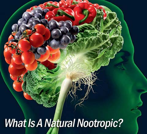 natural nootropic brain vitamins