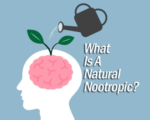 can natural nootropics help you concentrate?
