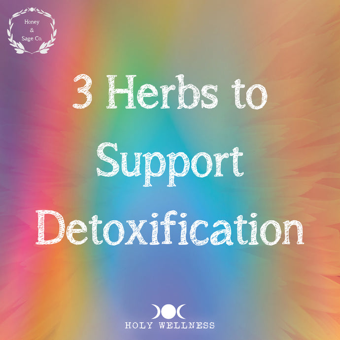3 Herbs to Support Detoxification