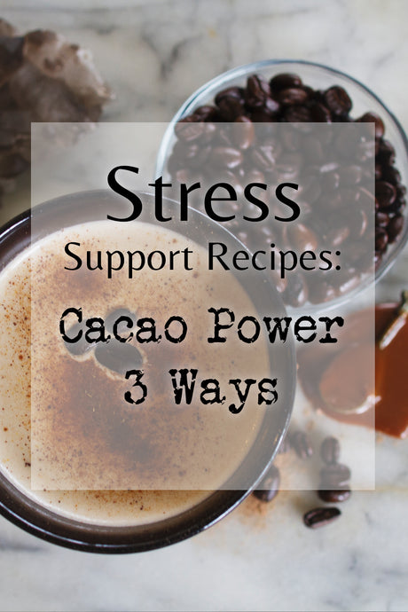 Stress Support Recipes: Cacao Power 3 Ways