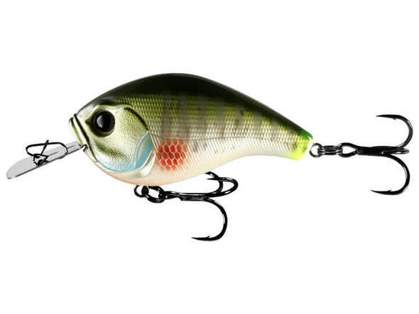 13 Fishing Jabber Jaw Dream Gill