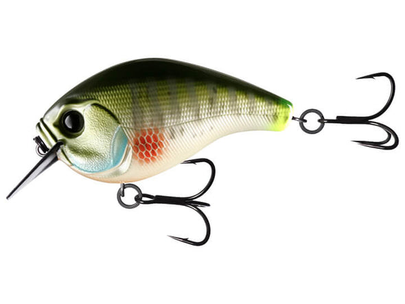 13 Fishing Scamp Dream Gill