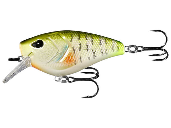 13 Fishing Warthog Dream Gill