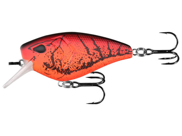 13 Fishing Warthog Mudbug Punch