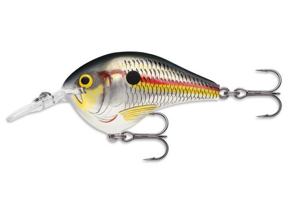 Rapala DT Series Shad