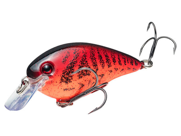 Strike King KVD Square Bill 1.5 Chili Craw