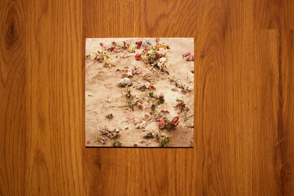 Continental Obscura photobook w/ Manchester Orchestra/ Minus the Bear 7""