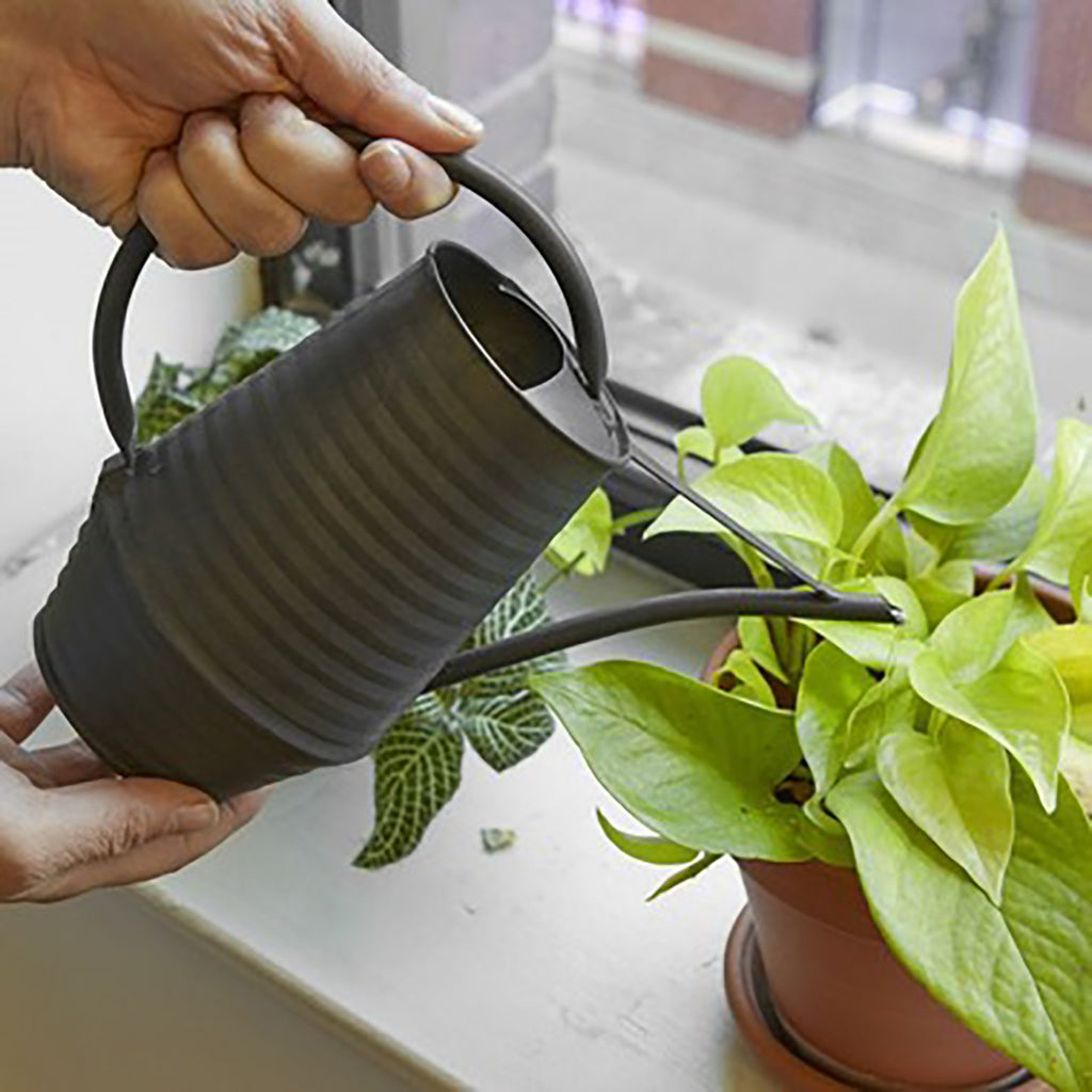 Matte Black Watering Can
