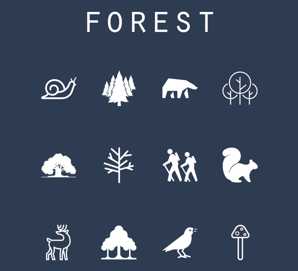 Forest - Beacon Collection