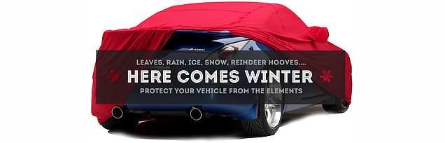 Top 6 Steps for your vehicle's Winter Storage