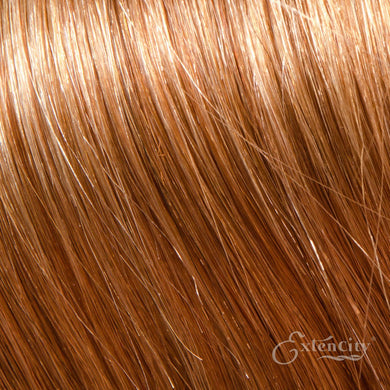 #14 Medium Ash Blonde 10 Piece Clip-ins - ExtenCity Hair