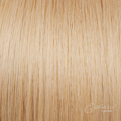 #16 Light Blonde/Dark Honey 10 Piece Clip-ins - ExtenCity Hair