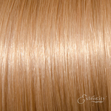 #22 Light Ash Blonde/Medium Blonde 10 Piece Clip-ins - ExtenCity Hair