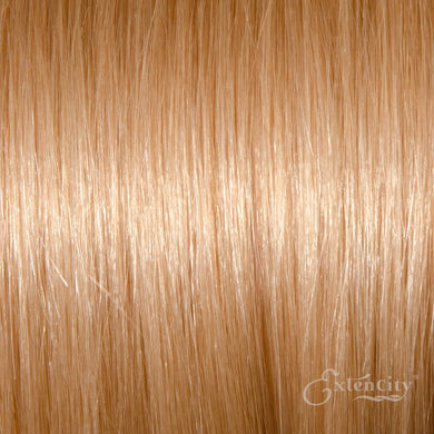 #24 Natural Blonde 10 Piece Clip-ins - ExtenCity Hair