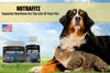 POWER FLORA - Probiotics for Dogs and Cats