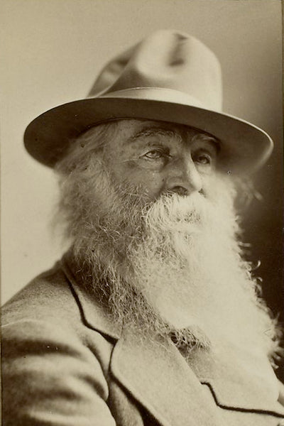Walt Whitman Northern Fir Beard Oil
