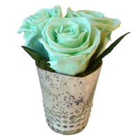 3 Rose Dotted Cup