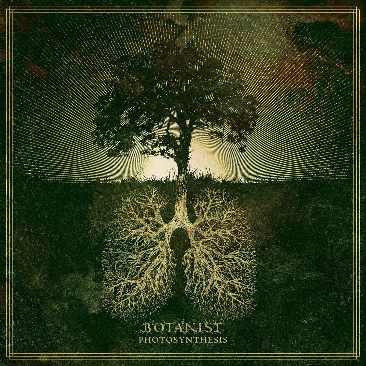 "Botanist ""Photosynthesis"" CD (pre-order)"