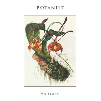 "Botanist ""VI: Flora"" LP - The Flenser"