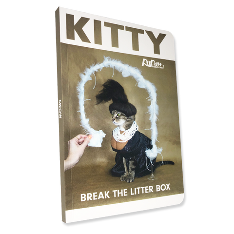Kitty Kardashian Notebook