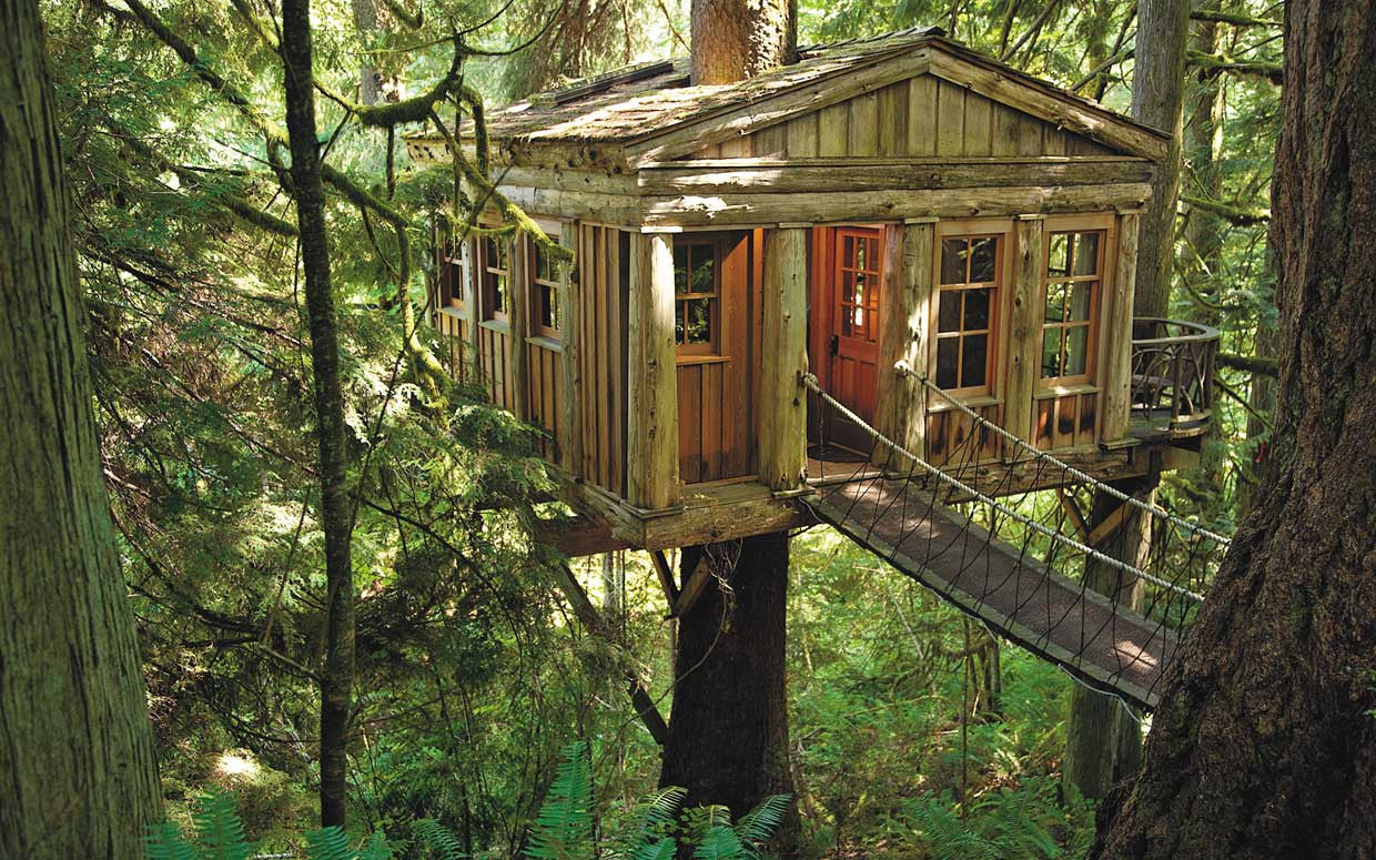 Picture of: How To Build A Treehouse Basics First Mountain Home Building Products