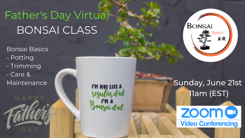 Father's Day Virtual Class (Tree Included)