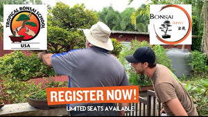 Tropical Bonsai School 2020