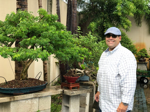 Appointment with Bonsai Artist, Toby Diaz