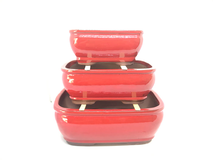 "6"", 8"", 10"" Glazed Ceramic Bonsai Pot (Candy Apple Red)"