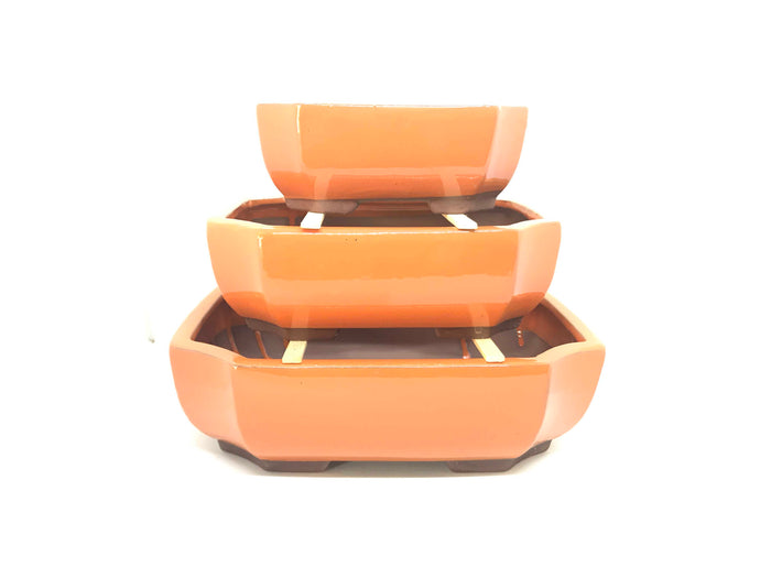 "6"", 8"", 10"" Glazed Ceramic Bonsai Pot (Atomic Tangerine)"