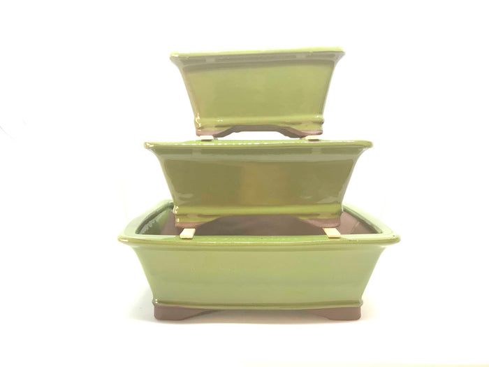 "6"", 8"", 10"" Glazed Ceramic Bonsai Pot (Chartreuse Rectangle)"