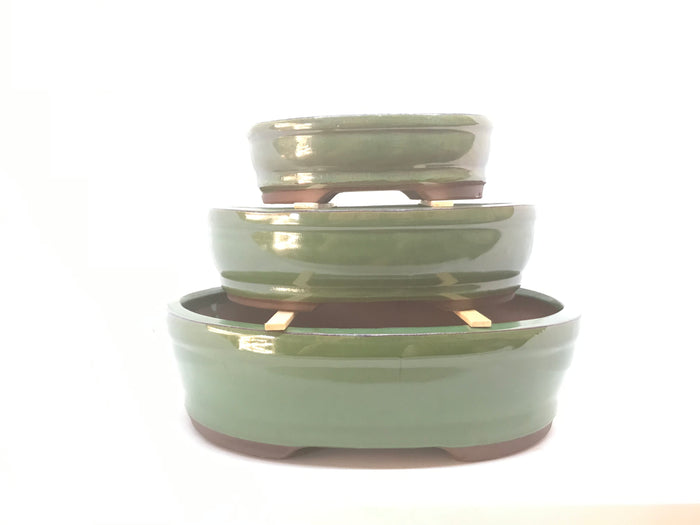 "6"", 8"", 10"", 12"" Glazed Ceramic Bonsai Pot (Forest Green)"