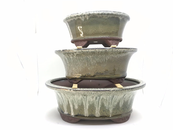 "6"", 8"", 10"" Glazed Ceramic Bonsai Pot (Rainforest)"