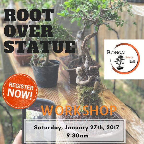 Root over Statue Workshop