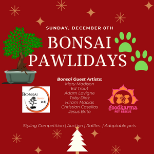 Bonsai Pawlidays 2019