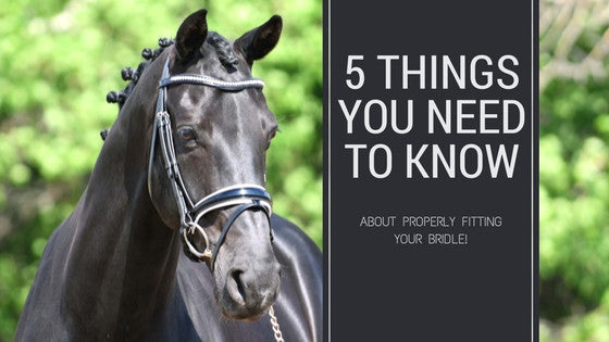 5 Things You Need To Know About Bridle Fit