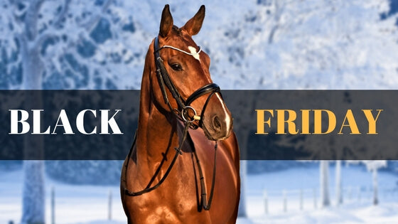 Black Friday Bridle Blowout