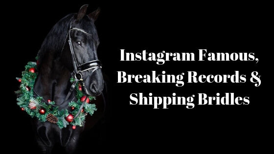Instagram Famous, Breaking Records, and Shipping Bridles