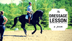 The Dressage Lesson - A Poem