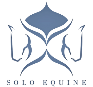 Image result for solo equine logo