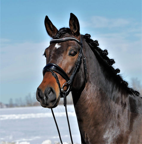 Solo Stellar Black Patent dressage bridle with extra wide padding. Rolled snaffle. Bling browband.