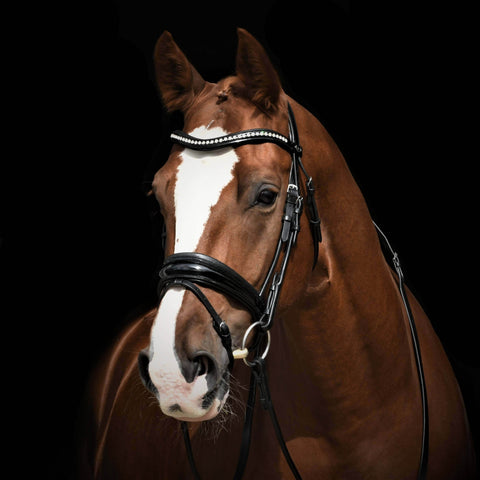 Image of Solo Stellar Black Patent dressage bridle with extra wide padding. Rolled snaffle. Bling browband.