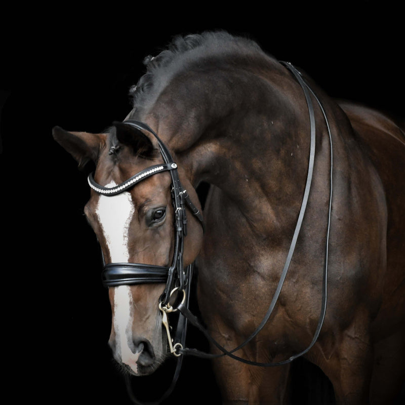 Solo ShowBiz - Dressage Double Bridle. Dressage Bridle in Patent black with anatomical shape. Bling browband. Padded dressage bridle