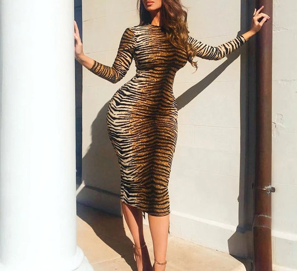Janet Leopard Print Long Sleeve Bodycon Dress