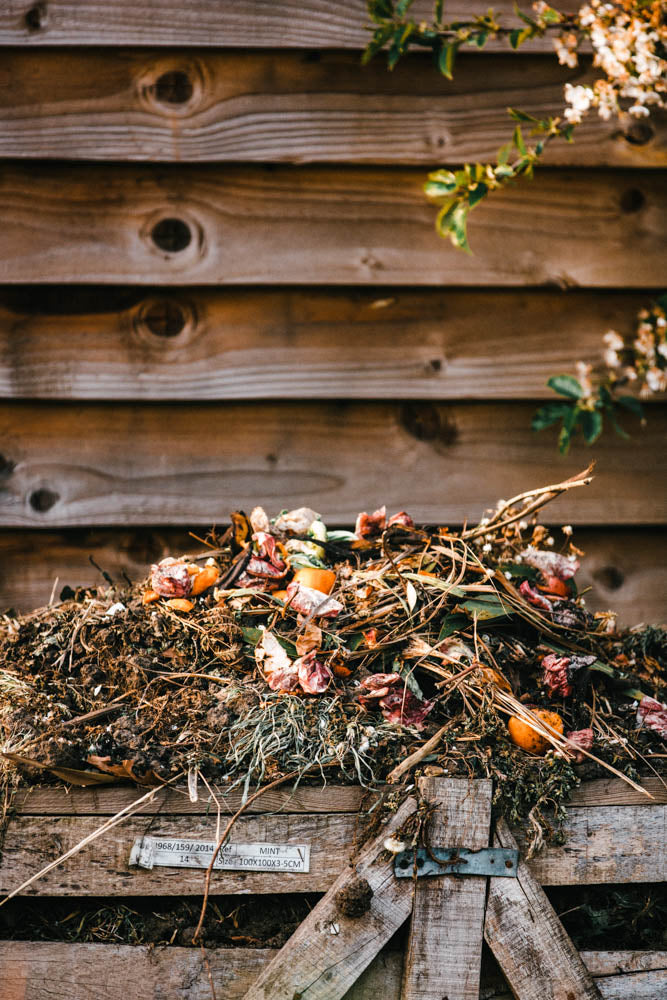Sustainability | Composting 101
