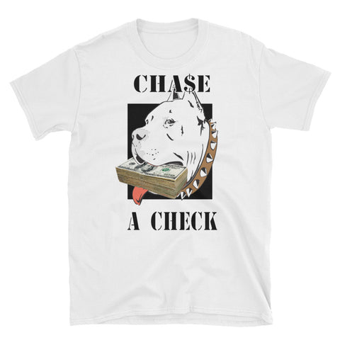 CHASE A CHECK