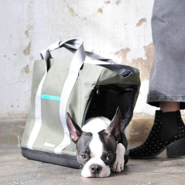 Pet Commuter Bag
