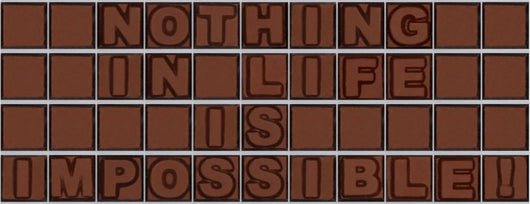 Nothing in life is impossible