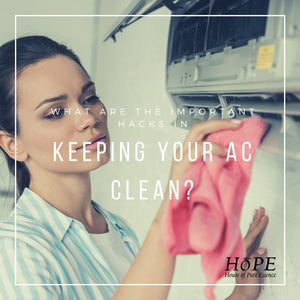 Keeping Your AC Clean
